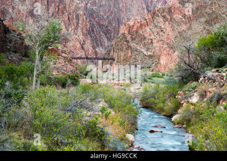 Bright Angel Creek flowing toward the Colorado River below the Black Suspension Bridge. Grand Canyon National Park, - Stock Photo