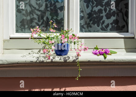 An old house window decorated with flower pots in Bamberg, Germany - Stock Photo