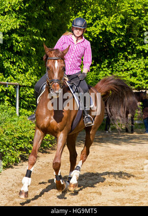 Young woman training with horse on sand place - Stock Photo