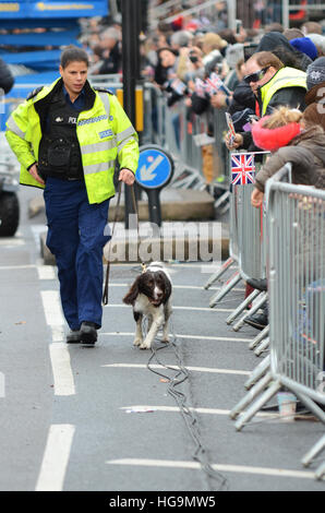 A police sniffer dog checking the crowd barrier before London's New Year's Day Parade 2017 - Stock Photo