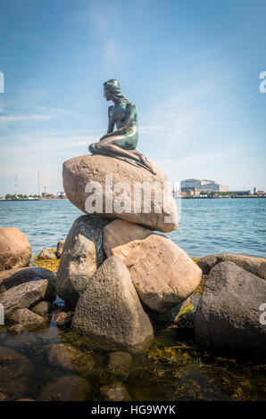 The little mermaid statue in Copenhagen - Stock Photo