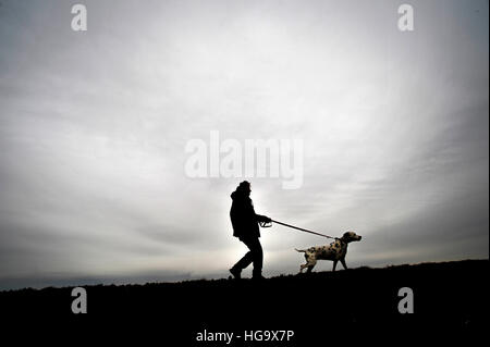 Man takes his dog for a walk.