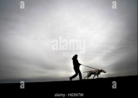 Man takes his dog for a walk. Stock Photo