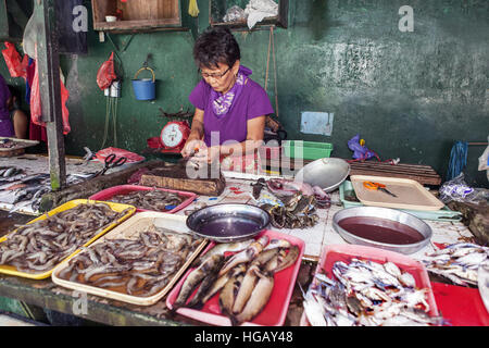 Filipino woman prepares milkfish, Chanos chanos, to sell at the public market in Barretto Town, Luzon Island, Philippines. - Stock Photo