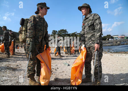 U.S. and South Korea Marines and Sailors clean a local beach in Pohang. - Stock Photo