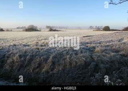 Frozen fallow field fens - Stock Photo