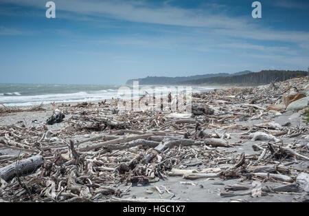 Driftwood beach, west coast, South Island, New Zealand - Stock Photo