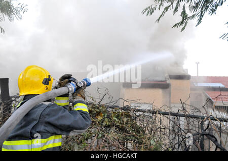 Wild fire in the city of Haifa, Israel in November 2016 - Stock Photo