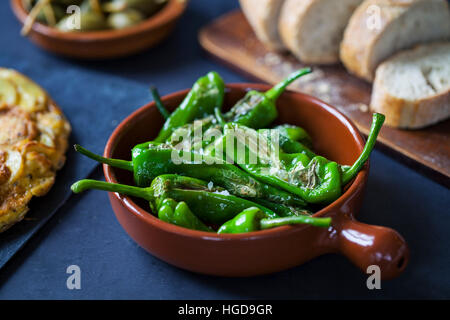 Authentic Spanish tapas with padron peppers - Stock Photo