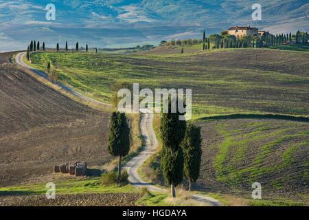 Winding farm track leading to county villa near Pienza, Tuscany, Italy - Stock Photo
