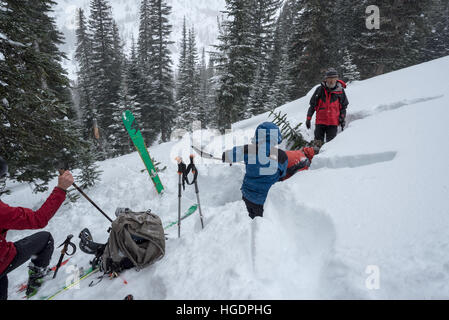Backcountry skiers digging an avalanche test pit in Oregon's Wallowa Mountains. - Stock Photo