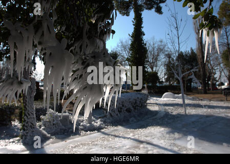 TThessaloniki, Greece, January 8th 2017.  Greece Weather. Water icicles formed on tree brances.  Below freezing - Stock Photo