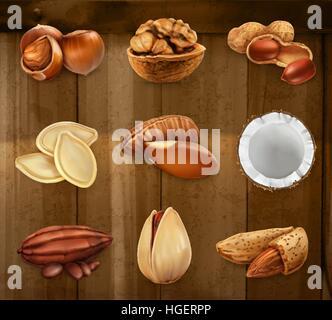 Nuts in the shell. Peanuts, pistachio, hazelnut, cocoa, walnut. Vector icon set - Stock Photo