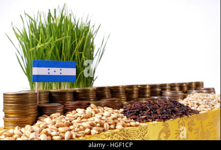 Honduras flag waving with stack of money coins and piles of wheat and rice seeds - Stock Photo