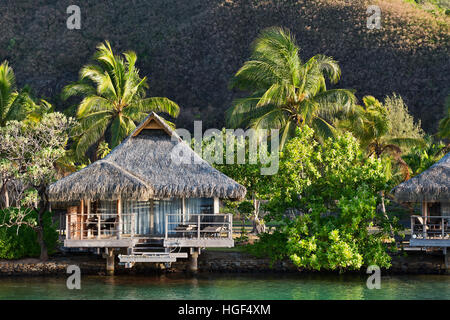 Bungalow with palm trees by the water, reflection, Mo'orea, French Polynesia - Stock Photo