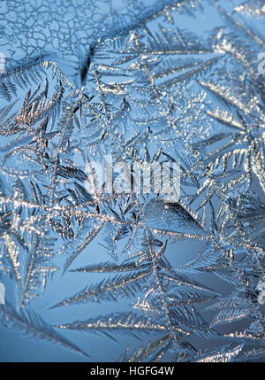 Close up of ice crystals forming intricate leafy patterns on a window with blue sky in the background. Shallow depth - Stock Photo