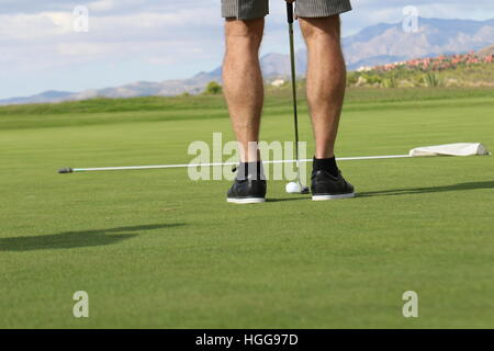 A golfer lines up a put on the putting green and is wearing shorts - Stock Photo