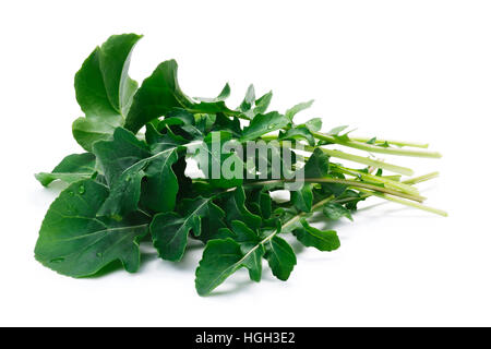 Fresh big-leaved  arugula (Eruca sativa) leafy salad. Clipping paths, shadow separated. Natural daylight color - Stock Photo
