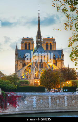 Notre Dame de Paris cathedral at night - Stock Photo