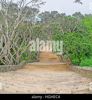 The long staircase from the Mihintale Temple to the mountain foot, surrounded by lush gardens, Sri Lanka. - Stock Photo