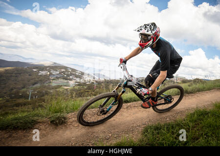 Mountain Bike Riders At Mt Buller Stock Photo Royalty Free Image