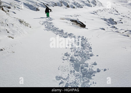 Granada, Spain. 8th of December, 2016. Kevin Blanc professional freeride skier walks in the snow at Sierra Nevada - Stock Photo