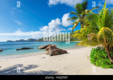 Anse Georgette Beach on Praslin island in Seychelles. - Stock Photo