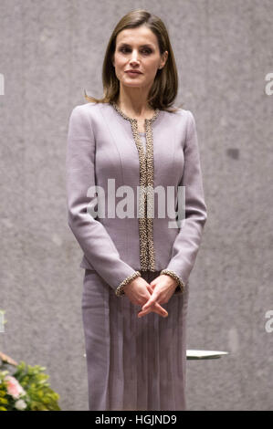Madrid, Spain. 20th Jan, 2017. Spanish Queen Letizis attends the Tomás Prieto Awards 2017 in Madrid on 20 January - Stock Photo