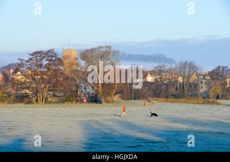 Bridport, Dorset, UK. 23rd Jan, 2017. UK Weather. A dog walker walking across the frost covered field at Askers - Stock Photo