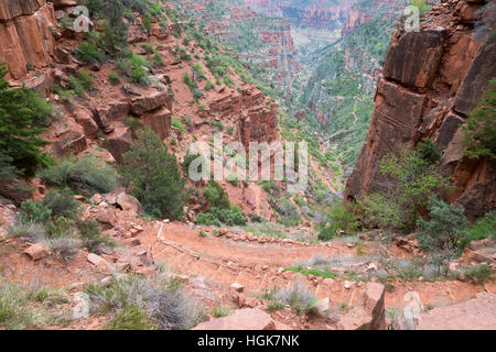 The North Kaibab Trail descending steeply from the Supai Tunnel. Grand Canyon National Park, Arizona - Stock Photo