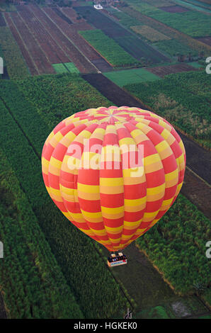 Aerial view of a hot air balloon and green farms, Thebes, Luxor, Egypt - Stock Photo