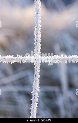 Hoar frost on a wire fence in the Scottish borders. Scotland - Stock Photo