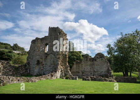Ruins of Kirkham Abbey (Kirkham Priory) beside the river Derwent in North Yorkshire. - Stock Photo