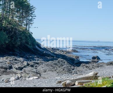 Botany Bay, Vancouver Island, BC, Canada - Stock Photo