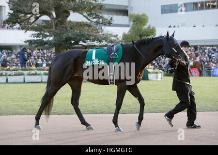 Kyoto, Japan. 5th Jan, 2017. Black Spinel Horse Racing : Black Spinel is led through the paddock before the Sports - Stock Photo