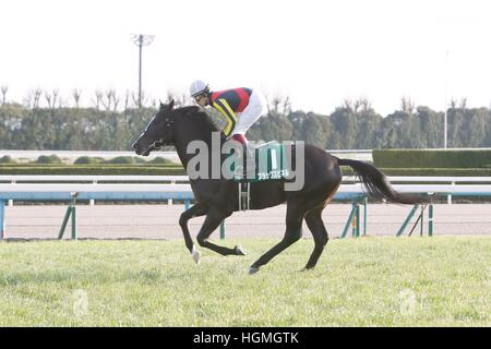 Kyoto, Japan. 5th Jan, 2017. Black Spinel (Yuichi Fukunaga) Horse Racing : Black Spinel ridden by Yuichi Fukunaga - Stock Photo