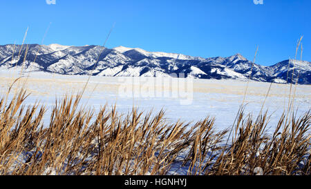 Winter mountain landscape in Bozeman, Montana with Bridger Mountains in background. - Stock Photo