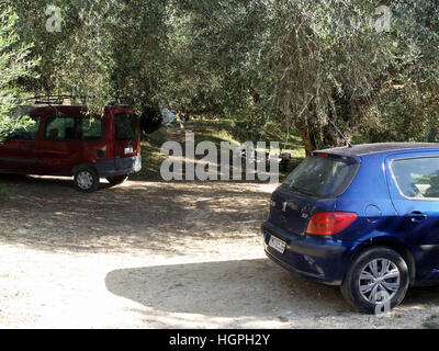 Blue Peugeot 307 and red Renault Kangoo parked in olive grove near Karousades, Corfu, Greece - Stock Photo