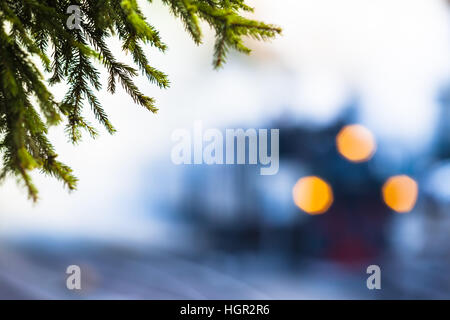 Twigs of a conifer tree and blurred illuminated steam locomotive in the background - Stock Photo