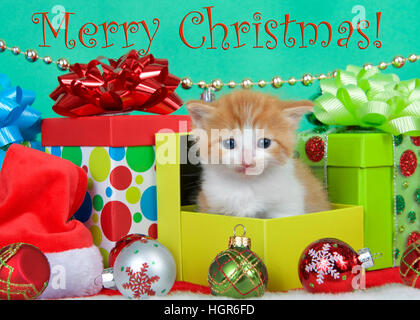Adorable orange and white long haired tabby kitten sitting in christmas presents with holiday ornaments, green background - Stock Photo