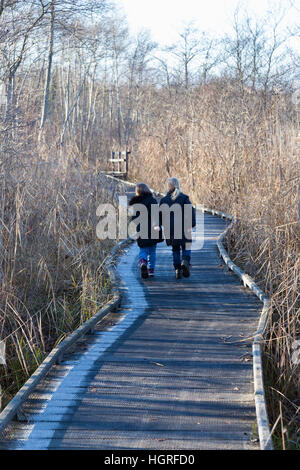 Children tourist kids / tourists & walkway / pathway / foot path / footpath. Marais de Lavours National Nature Reserve. - Stock Photo
