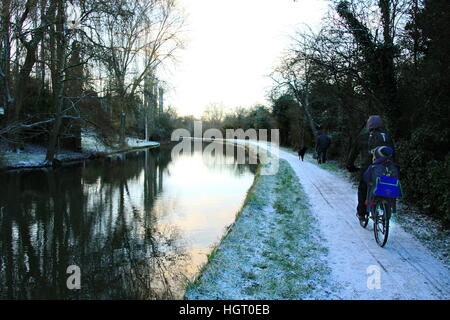 Swindon, UK, 13th December 2017. Member of the public walks dogs & man cycles child to school along canal tow path - Stock Photo