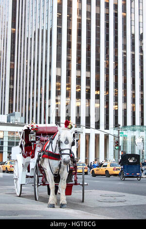 White horse at Fifth Avenue, New York City - Stock Photo