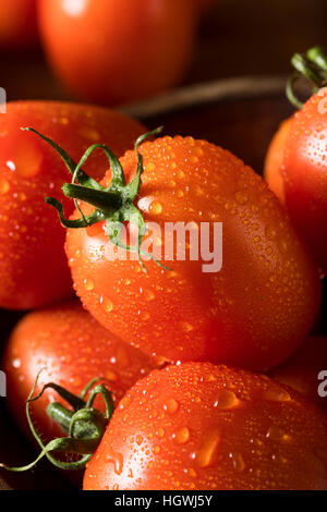 Raw Red Organic Roma Tomatoes Ready for Cooking - Stock Photo