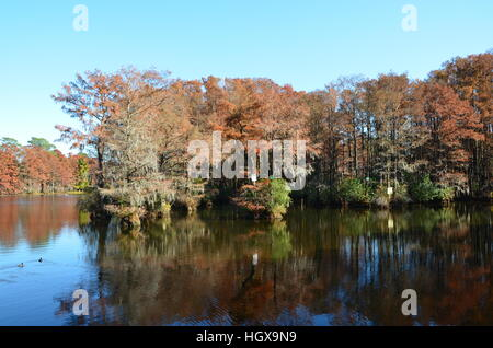 Fall scene along Greenfield Lake in Wilmington North Carolina. - Stock Photo