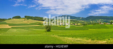 Green hills nature panoramic view, Kalnik mountain, Croatia - Stock Photo
