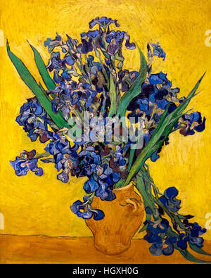 Irises, by Vincent van Gogh, 1890, oil on canvas, Netherlands, Europe - Stock Photo