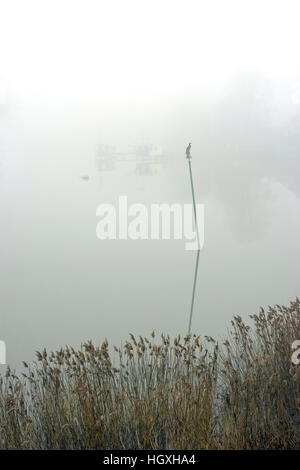 starboard navigation pole in thick winter fog at Chatelier Lock Le Lyvet Rance Valley River Rance Brittany France - Stock Photo