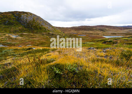 A low hill rising above Autumn grasses on the tundra. - Stock Photo