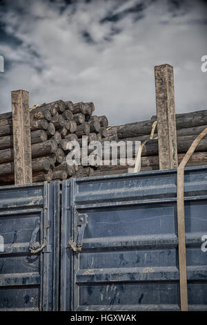 blur in south africa truck full of forest wood dirt and dust - Stock Photo